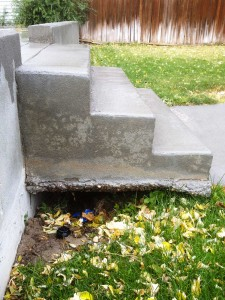 steps with rebar